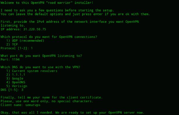 openvpn server install