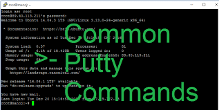 common putty commands