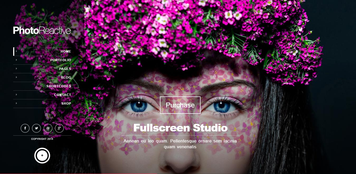 Fullscreen Studio for WordPress