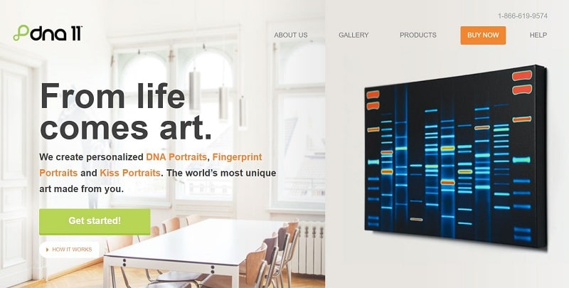 Create Custom Art From Your DNA
